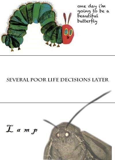 18 Dank Memes so True 3