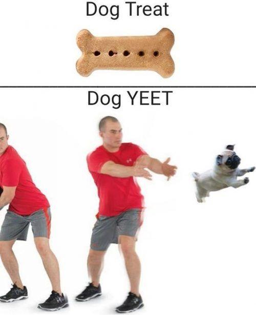 Dank Memes Triggered 8 1