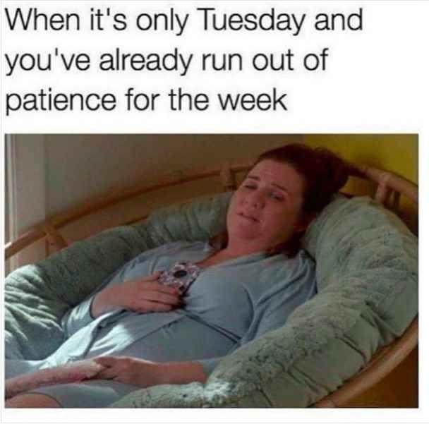 20 Happy Tuesday Meme 15