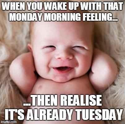 20 Tuesday Meme Work 16