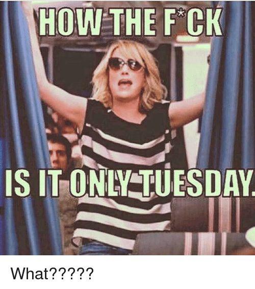 20 Tuesday Meme Work 6