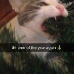 18 Christmas Memes Boyfriend 7