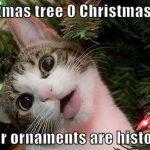 18 Christmas Memes Christian 12
