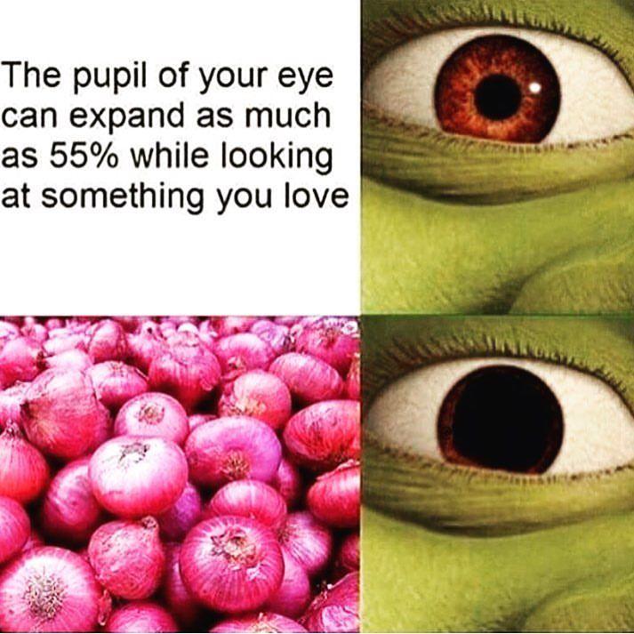 18 Memes In Real Life So True 12