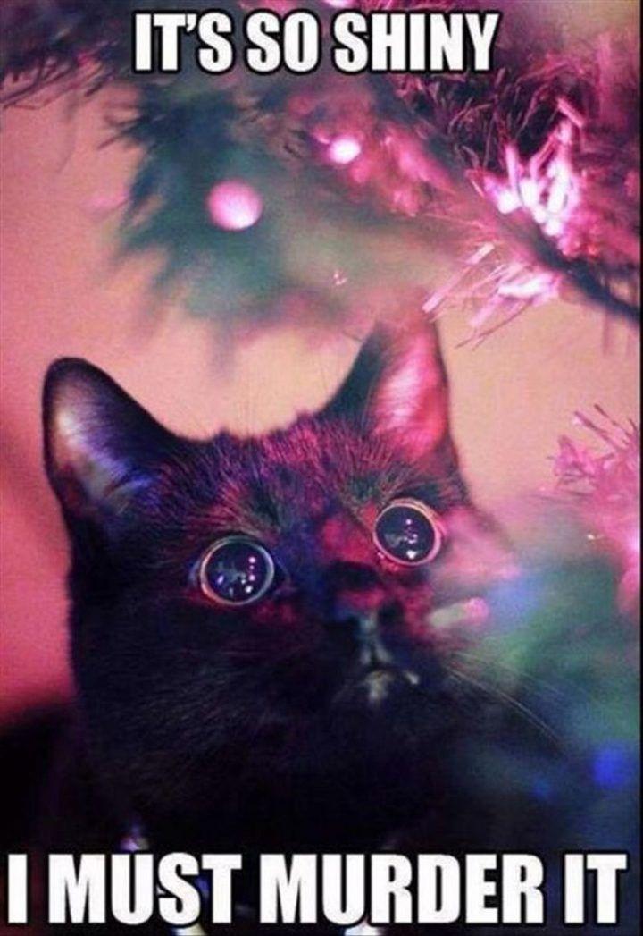 19 Christmas Memes Countdown 9