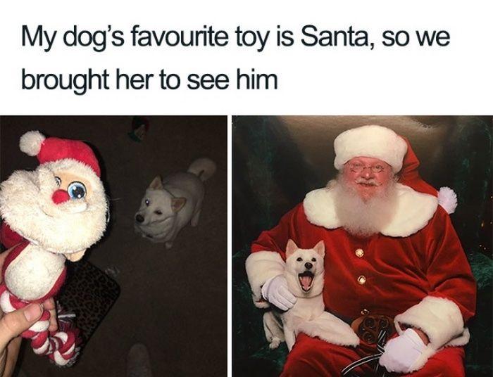 19 Christmas Memes Dank 6