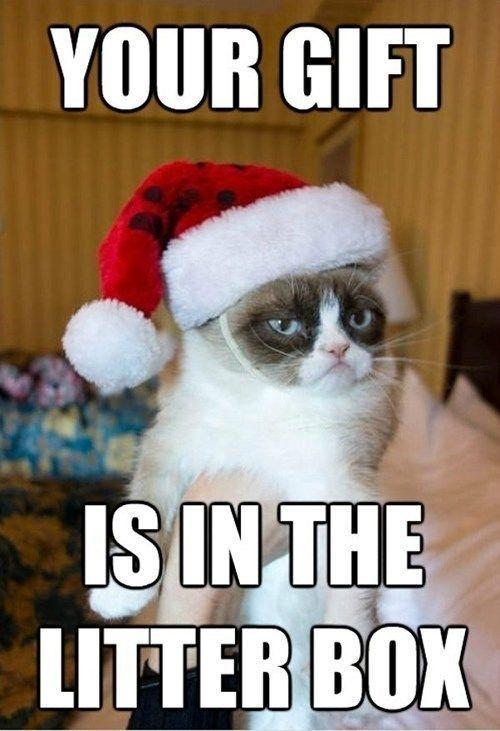 19 Christmas Memes Family 1