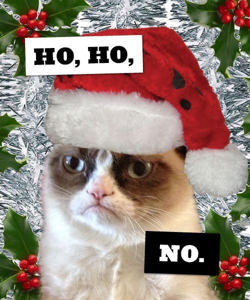 19 Christmas Memes Family 8