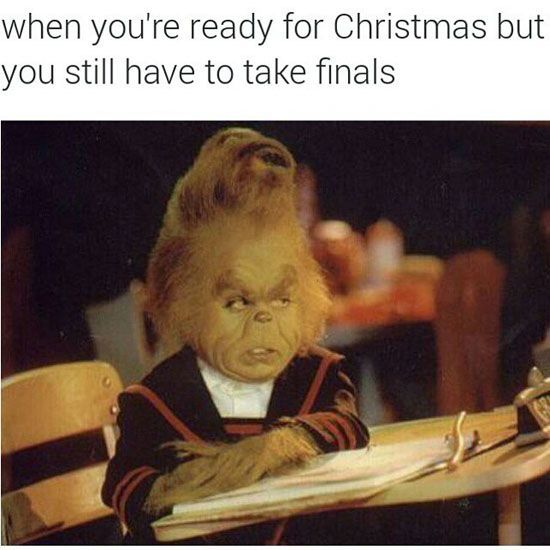 19 Christmas Memes Funny 12