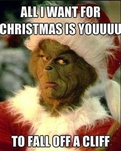 19 Christmas Memes Grinch 10