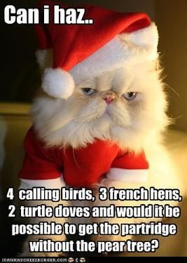 19 Christmas Memes Grinch 17