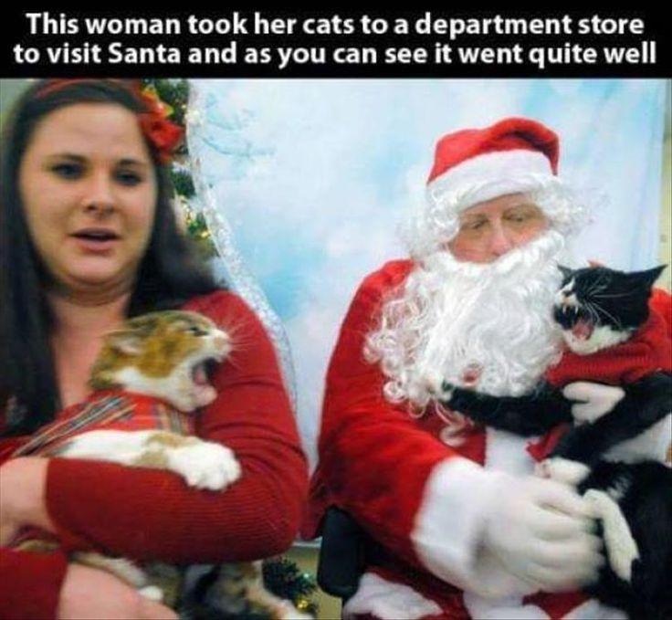 19 Christmas Memes Grinch 5