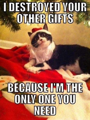 19 Christmas Memes Hilarious 10