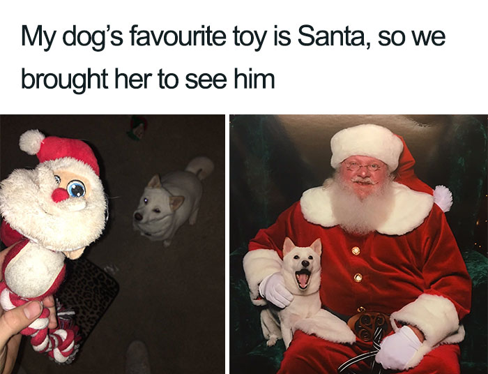 20 Christmas Memes Cartoon 17