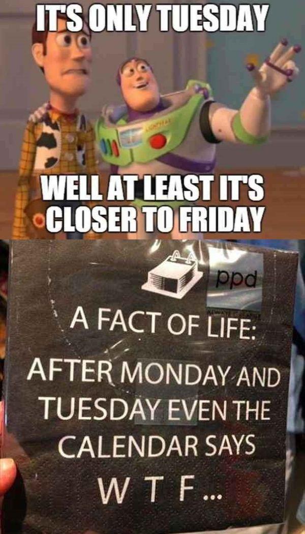 20 Tuesday Meme Awesome 10