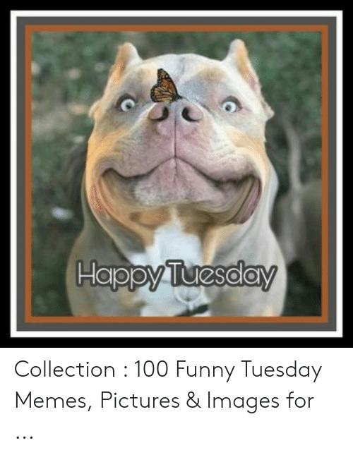 20 Tuesday Meme Mornings 2