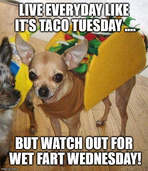 20 Tuesday Meme Mornings 3