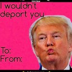 20 Valentines Day Memes For Him 15