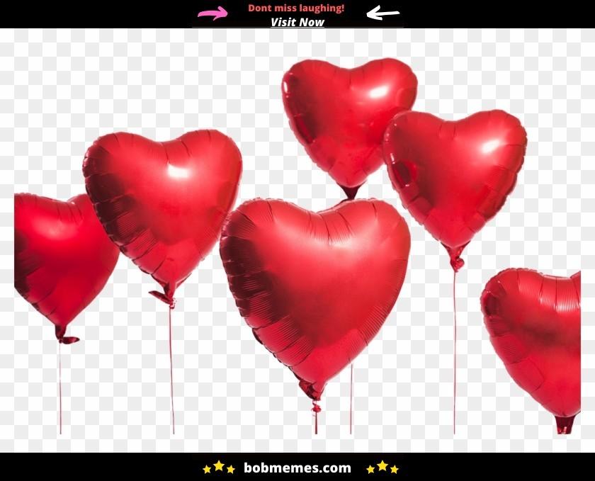 18 Valentines Day Memes Humor 6
